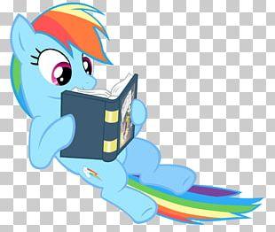 Rainbow Dash Pinkie Pie My Little Pony Fluttershy PNG