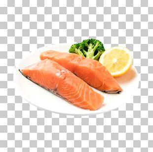 Seafood Sashimi Squid As Food Octopus Salmon PNG