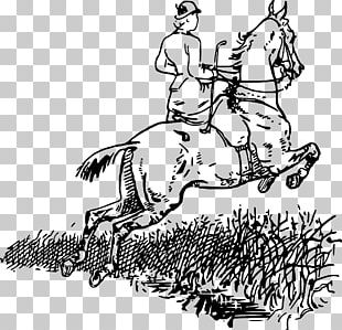 American Paint Horse Equestrian Horse&Rider Bridle PNG