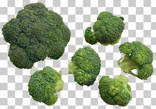 Chinese Broccoli Cauliflower Vegetable PNG