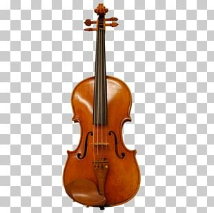 Viola Musical Instruments Violin String Instruments Cello PNG