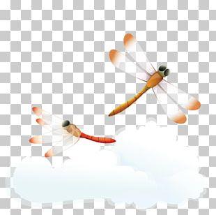 Sky Computer Illustration PNG