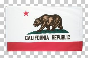Rainbow California Republic Flag Of California State Flag PNG