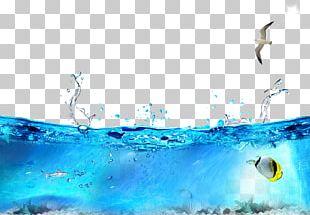 Seabed Ocean Seawater PNG