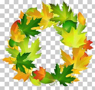 Leaf Border Oval PNG