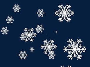 Transparent Snowflake Material PNG