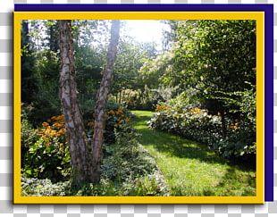 Landscape Design Vegetation Garden Flora PNG