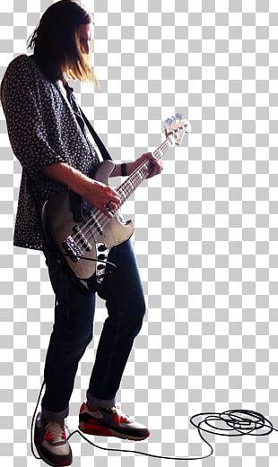 Musical Instruments Double Bass Bass Guitar PNG