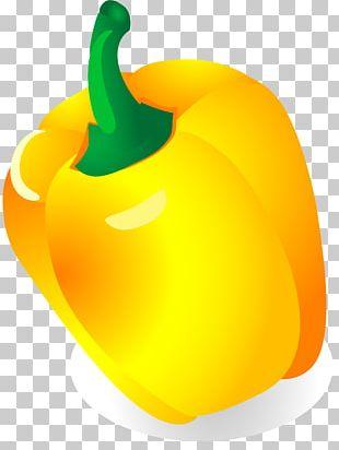 Vegetable Food Bell Pepper PNG
