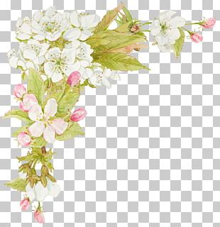 Flower Watercolor Painting Floral Design PNG
