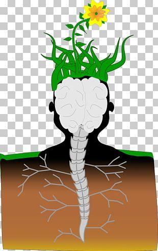 Brain Spinal Cord Plant Neuron Vertebral Column PNG