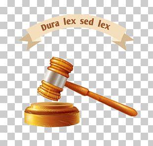Judge Euclidean Illustration PNG