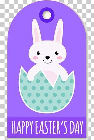 Easter Bunny White Rabbit European Rabbit Leporids PNG