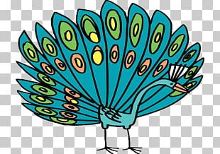 Peafowl Feather Tail PNG