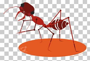 The Ants Atom Ant Insect PNG