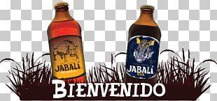 Beer Bottle Alcoholic Drink Font PNG