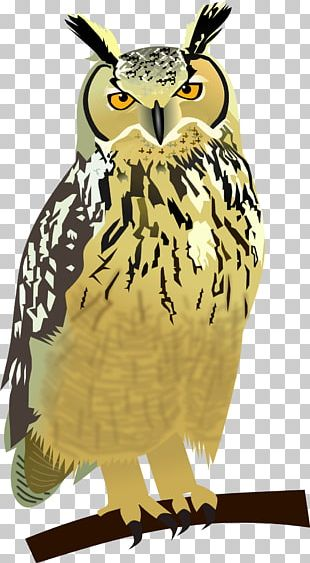 The World Of The Great Horned Owl Eurasian Eagle-owl Bird PNG