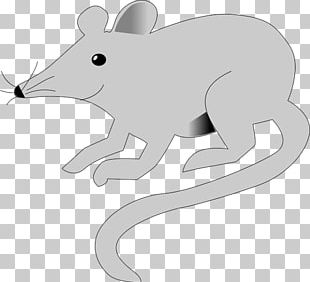 Mouse Rodent Brown Rat Laboratory Rat Animal PNG