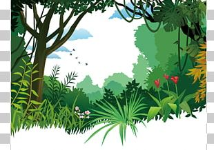 Tropical And Subtropical Moist Broadleaf Forests Poster PNG
