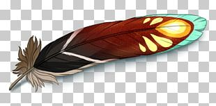 Butterfly Insect Wing Feather PNG