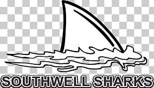 Shark Fin Soup Shark Finning Great White Shark PNG