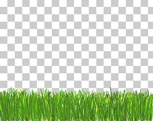 Lawn Computer Icons Desktop PNG