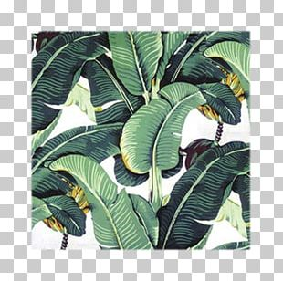Banana Leaf IPhone 6 Plus PNG