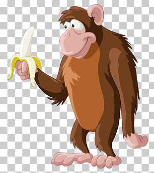 Chimpanzee Primate Monkey Banana PNG