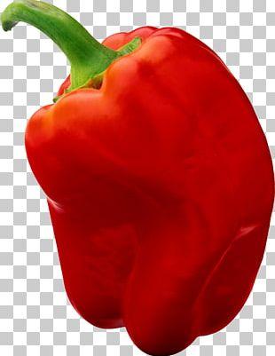 Bell Pepper Chili Pepper Red Black Pepper PNG
