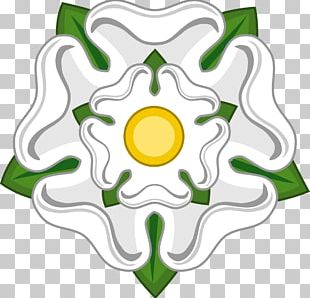 White Rose Of York Battle Of Bosworth Field Wars Of The Roses House Of York PNG