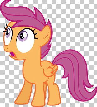 Pony Scootaloo Rainbow Dash Rarity Pinkie Pie PNG