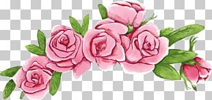 Beach Rose Flower Wreath Euclidean PNG