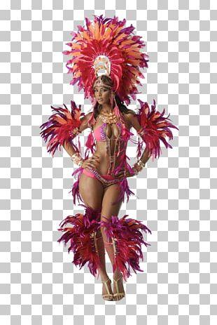 Trinidad Corrientes Carnival In Rio De Janeiro Brazilian Carnival PNG
