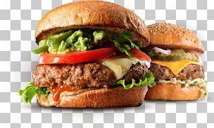 Hamburger Cheeseburger French Fries Fast Food Pizza PNG