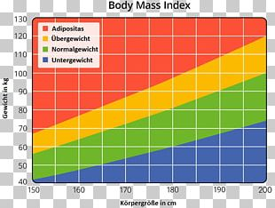 Body Mass Index Human Body Weight Weight Loss Stock Photography PNG
