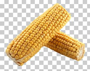 Corn On The Cob Maize Sweet Corn Vegetable PNG