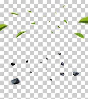 Chemical Element Leaf Branch PNG