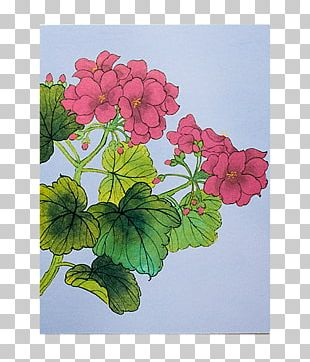 Crane's-bill Paper Watercolor Painting Floral Design PNG