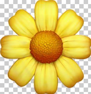 Emojipedia Flower Sticker Emoticon PNG