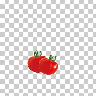 Red Tomato Vegetable PNG