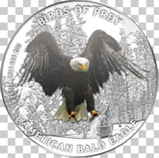 Bald Eagle Silver Coin Proof Coinage PNG