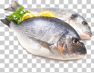 Fried Fish Gilt-head Bream Fish And Chips Stock Photography PNG