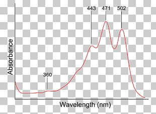 Ultraviolet–visible Spectroscopy Organic Spectroscopy Light PNG