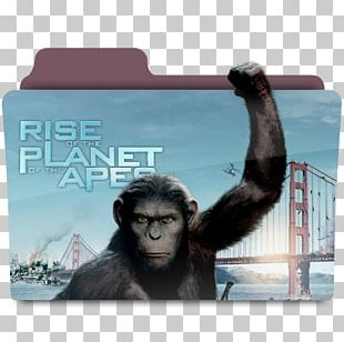 James Franco Rise Of The Planet Of The Apes Film PNG