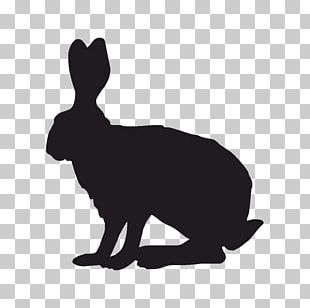 Domestic Rabbit Indian Hare Silhouette PNG