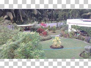Backyard Flora Botanical Garden Property PNG