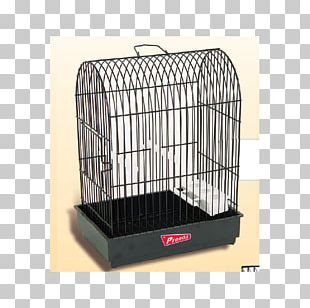 Cage Domestic Canary Bird Dog Crate PNG