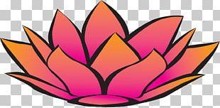 Nelumbo Nucifera Symbol Flower PNG