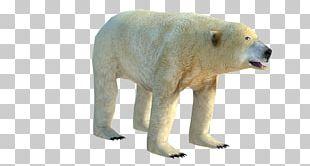 Polar Bear Low Poly 3D Computer Graphics Wavefront .obj File PNG