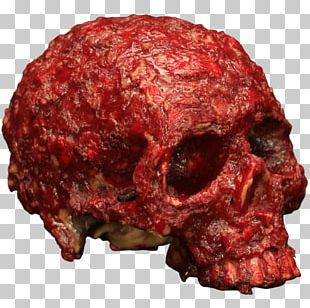 Skull Blood Human Skeleton Head PNG